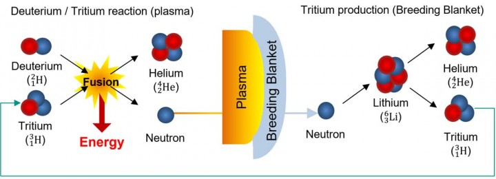 Tritium  a challenging fuel for fusion  Fusion 4 Freedom